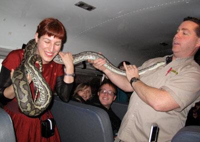 Diane Borsato: SnakeBus