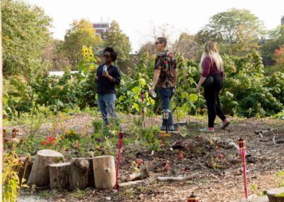 Speaking Fruit, Suburban Hospitality, Art Gallery of York University