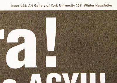 allí afuera! Viva la rebelión! Viva la AGYU!: Revolutionary Sundays and the Centre for Incidental Activisms